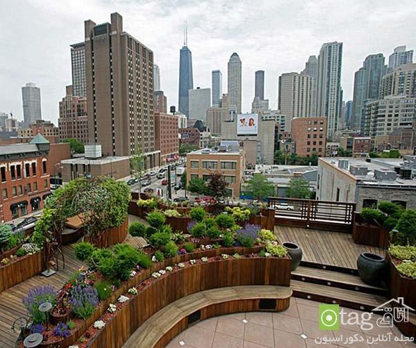 راهنمای ایجاد فضای سبز در پشت بام خانه ، روف گاردن