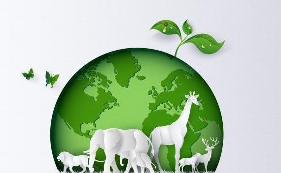 توجه به محیط زیست نیازمند نگاهی فراملی است، ظهور کووید-19 نتیجه بی توجهی به تنوع زیستی