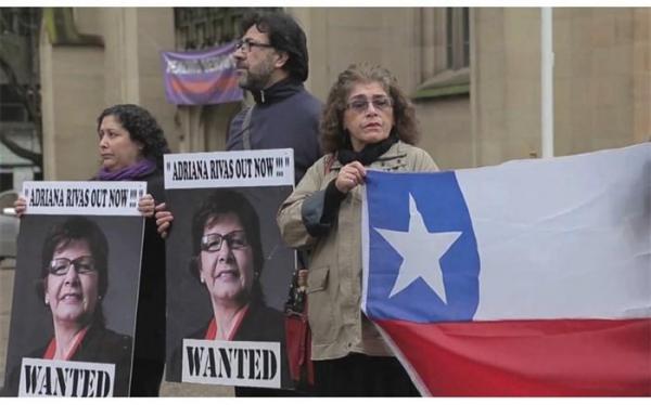 مدیر شیلی داک: با سینمای مستند هویت شیلی را به تماشا بنشینید