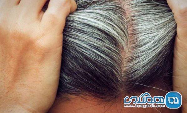 برطرف سفیدی مو به روشی کاملا طبیعی با استفاده از پوست سیب زمینی