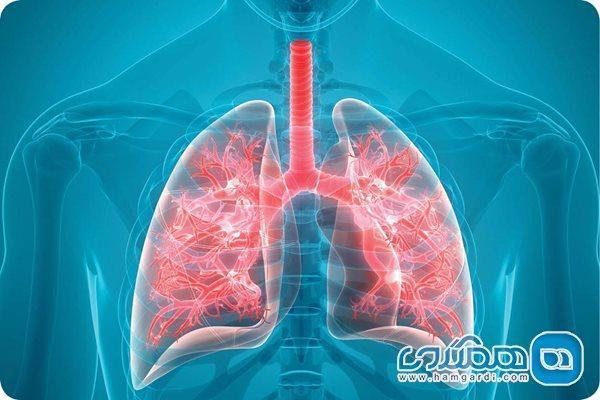 فیبروز ریه از علائم تا پیشگیری